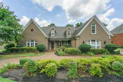 Collierville Single Family Home For Sale: 2177 Gallina