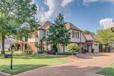 Collierville Single Family Home Contingent: 2235 Gallina