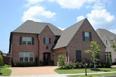 Collierville Single Family Home For Sale: 10077 Evening Cross