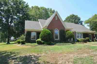 Collierville Single Family Home For Sale: 279 Schrader