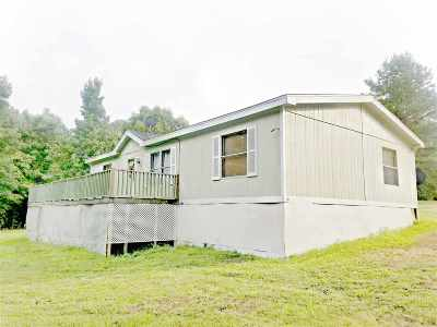 Selmer Single Family Home For Sale: 2067 Steadman
