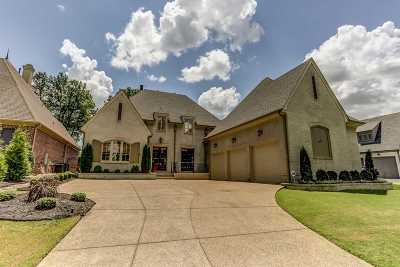 Collierville Single Family Home Contingent: 1243 S Dubray