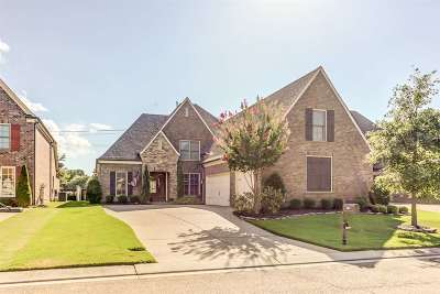 Collierville Single Family Home Contingent: 565 Ogilie