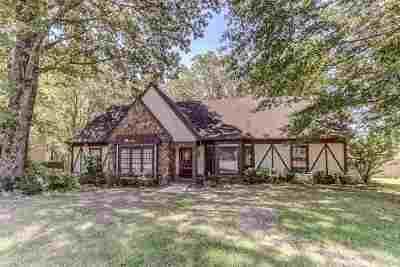 Germantown Single Family Home For Sale: 8373 Poplar Pike