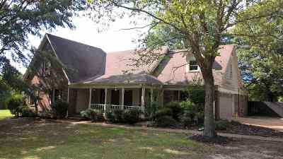 Collierville Single Family Home For Sale: 10735 Collierville