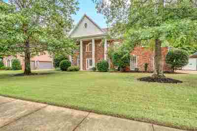 Collierville Single Family Home For Sale: 986 Surrey Oaks