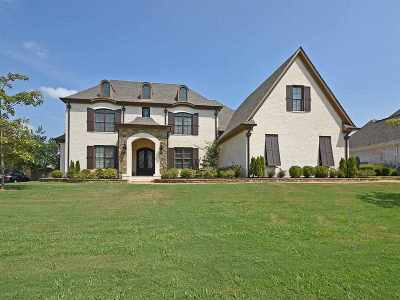 Collierville Single Family Home For Sale: 642 Ridge Springs