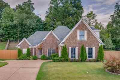 Arlington Single Family Home For Sale: 12289 Chapel Meadow