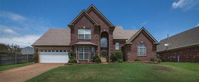 Arlington Single Family Home For Sale: 11168 Arlington Trace