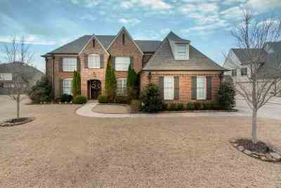 Collierville Single Family Home For Sale: 663 Totty