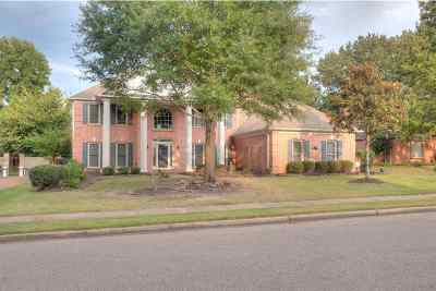 Collierville Single Family Home Contingent: 1782 Swynford