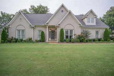 Collierville Single Family Home Contingent: 598 Sagewood
