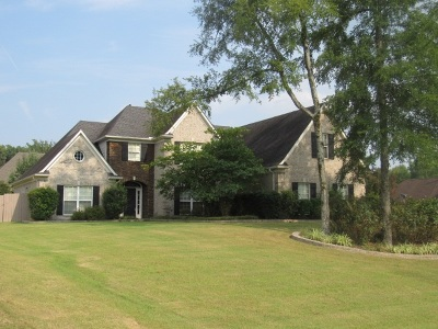 Olive Branch Single Family Home For Sale: 8432 Lakeview