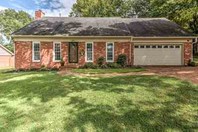 Collierville Single Family Home Contingent: 368 Wolf Trap