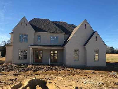 Piperton Single Family Home For Sale: 385 Magnolia