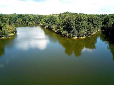 Hernando Residential Lots & Land For Sale: Bluff