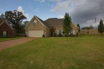 Southaven Single Family Home For Sale: 4131 Wildberry