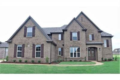 Olive Branch Single Family Home For Sale: 5093 Braham