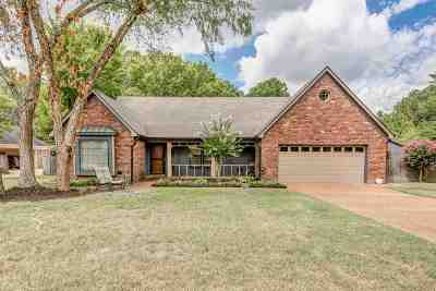 Collierville Single Family Home For Sale: 641 Hermitage Trail