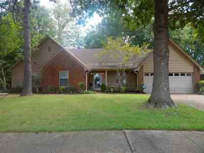 Collierville Single Family Home For Sale: 774 Aldis
