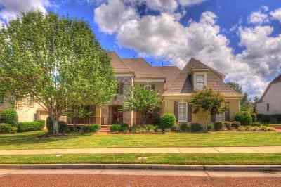 Germantown Single Family Home For Sale: 3018 Windstone