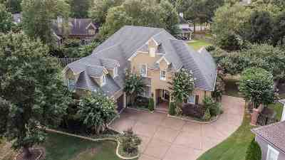 Collierville Single Family Home For Sale: 10349 Plantation Elm
