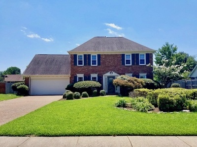 Collierville Single Family Home For Sale: 359 E White