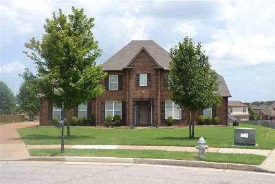 Collierville Rental For Rent: 243 Spacious Sky