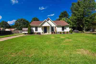 Collierville Single Family Home For Sale: 1027 Barbara Lynn
