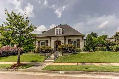 Collierville Single Family Home For Sale: 882 S Colbert