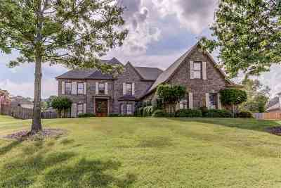 Collierville Single Family Home Contingent: 1507 Grand Cypress