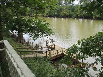 Ripley Single Family Home For Sale: 199 Chisholm Lake Spur