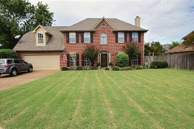 Collierville Single Family Home For Sale: 1351 Grey Wolf