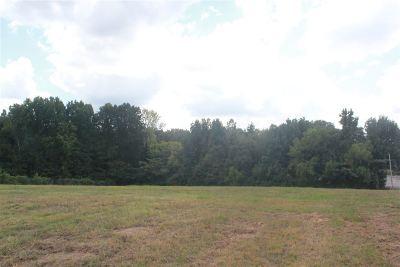 Bartlett Residential Lots & Land For Sale: Summer