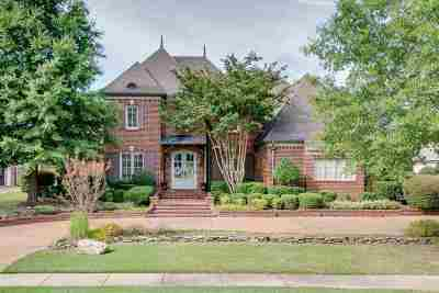 Collierville Single Family Home Contingent: 1228 Braystone