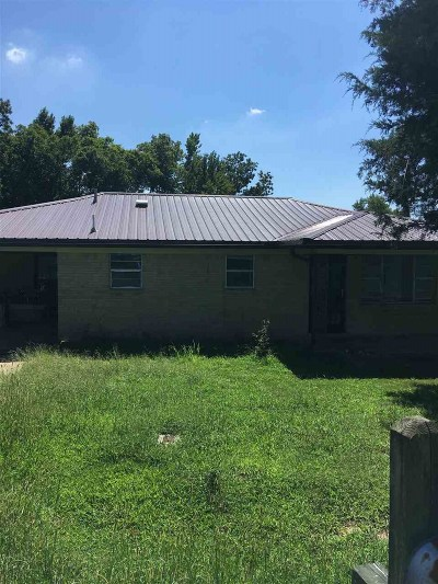 Ripley Single Family Home For Sale: 2344 Junius Lee