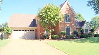 Memphis Single Family Home For Sale: 864 Wood Kirk