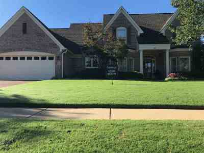 Collierville Single Family Home For Sale: 481 Thornbuck