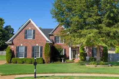 Collierville Single Family Home For Sale: 380 Empressor