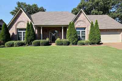 Collierville Single Family Home For Sale: 287 Grand Steeple