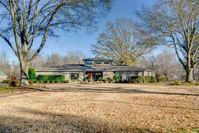 Olive Branch Single Family Home For Sale: 4905 Cherry Tree