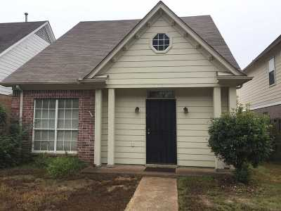 Collierville Single Family Home Contingent: 1242 S Collierville-Arlington