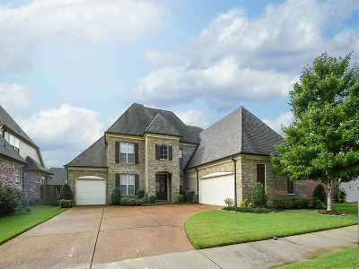 Collierville Single Family Home For Sale: 225 Red Sea