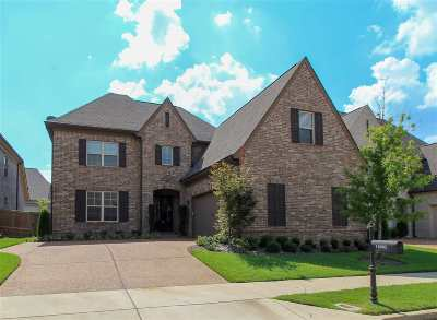 Collierville Single Family Home For Sale: 10085 Winding Cross