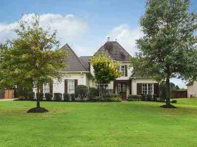 Collierville Single Family Home For Sale: 10701 Quiet