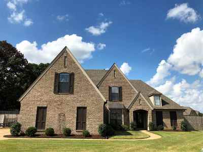 Olive Branch Single Family Home For Sale: 9094 Mitchells Farm