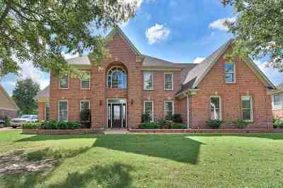 Collierville Single Family Home For Sale: 1029 Hatton