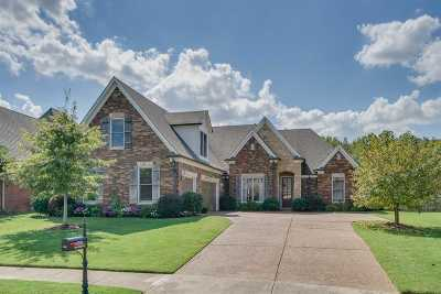 Arlington Single Family Home Contingent: 12097 Brooks Village