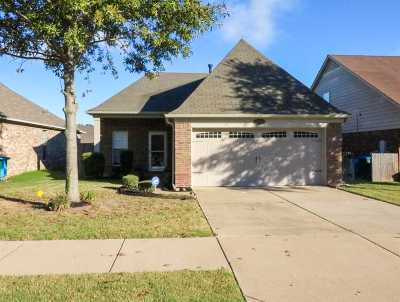 Arlington Single Family Home For Sale: 12310 Strong Heart