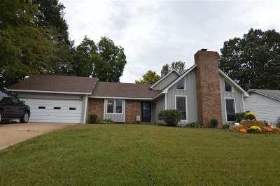 Bartlett Single Family Home For Sale: 6253 Memphis-Arlington